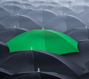 Grüne Kohle - Nachhaltige Investments für den Ruhrpott